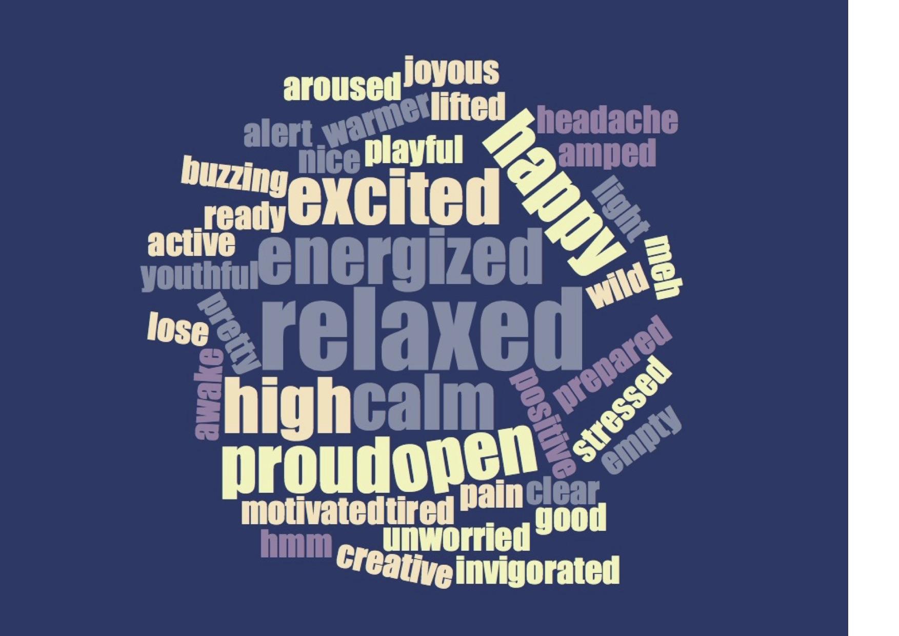 hackathon 01.12 words after richer model