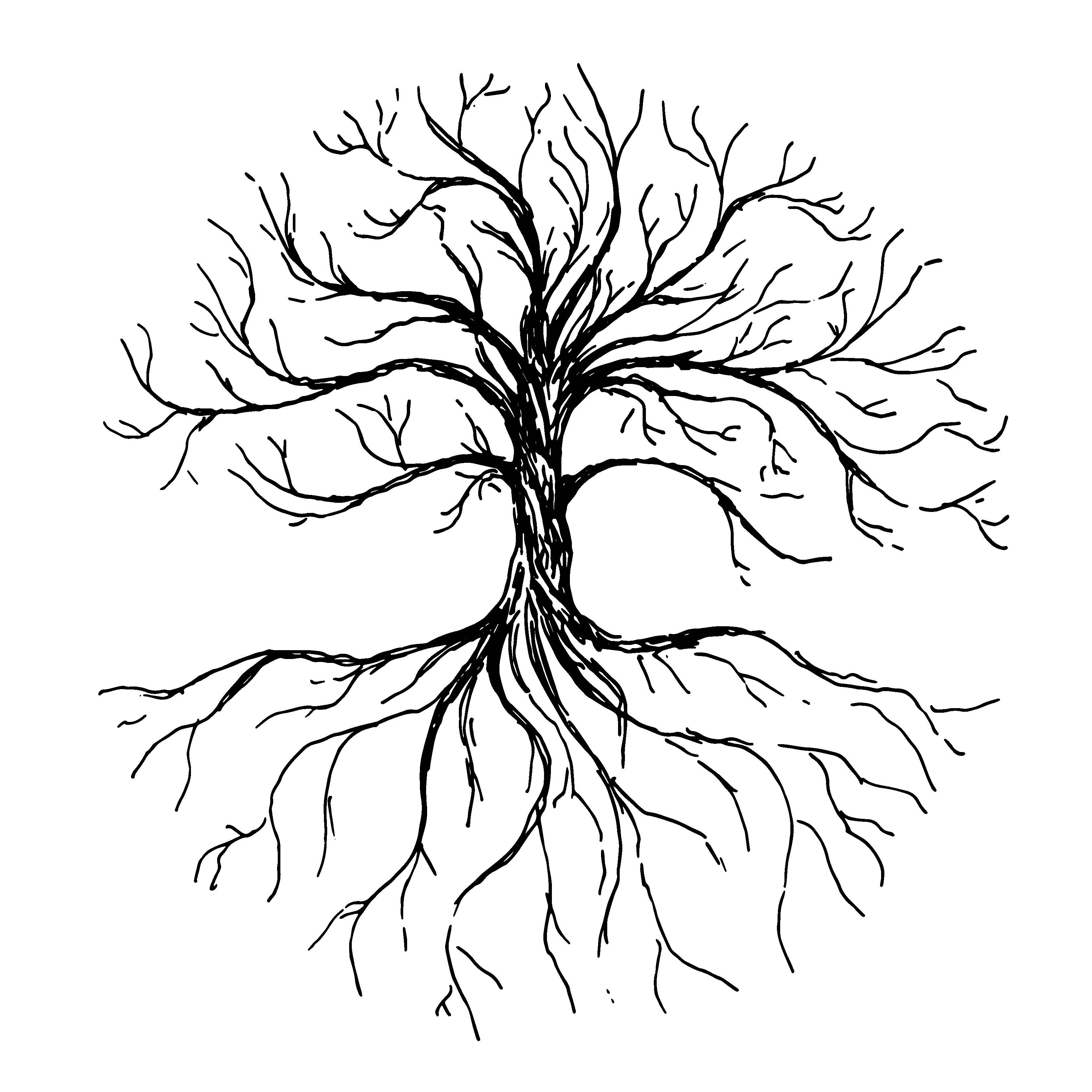 Roots in Rverse logo .jpg